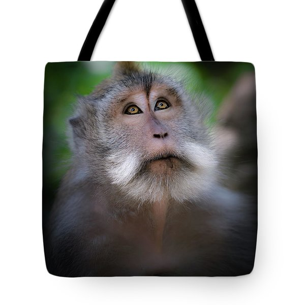 Sacred Monkey Forest Sanctuary Tote Bag by Larry Marshall