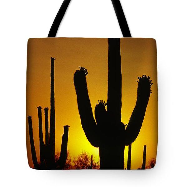 Saguaro Sunset Tote Bag by Sandra Bronstein