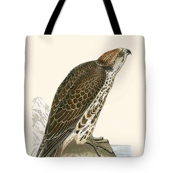 Saker Falcon Tote Bag by English School