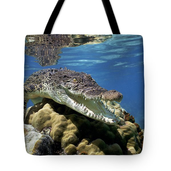 Saltwater Crocodile Smile Tote Bag by Mike Parry
