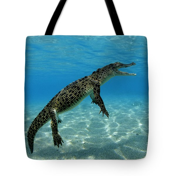 Saltwater Crocodile Tote Bag by Franco Banfi and Photo Researchers