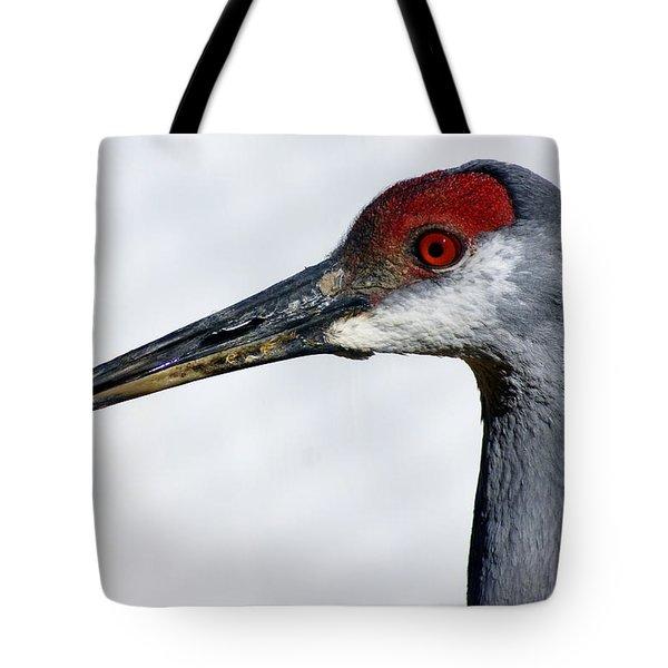 Sandhill Crane Tote Bag by Marty Koch