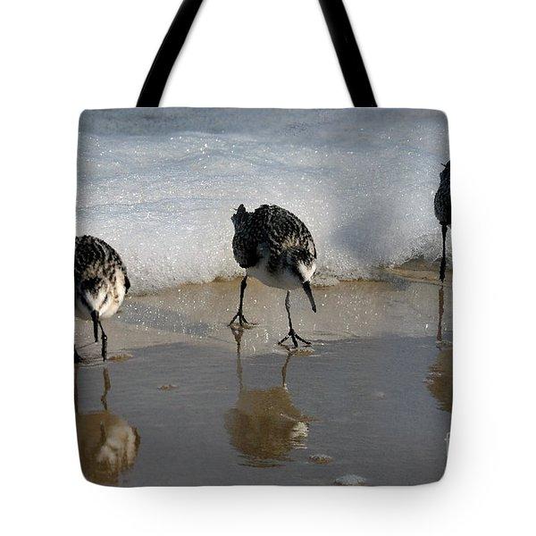 Sandpipers Feeding Tote Bag by Dan Friend