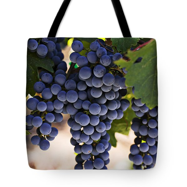 Sauvignon Grapes Tote Bag by Garry Gay