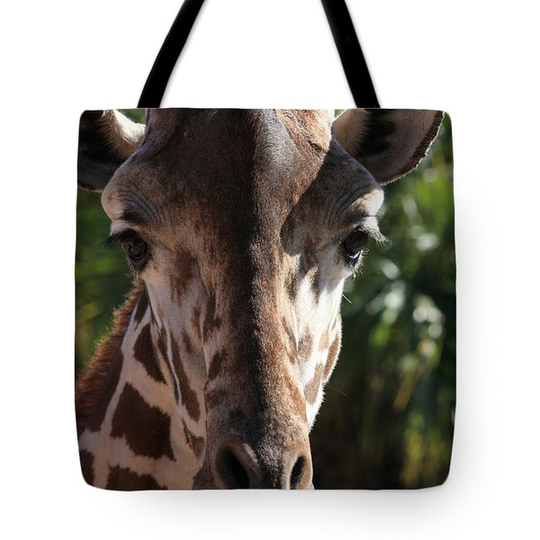 Say Cheese Card Tote Bag by Carol Groenen