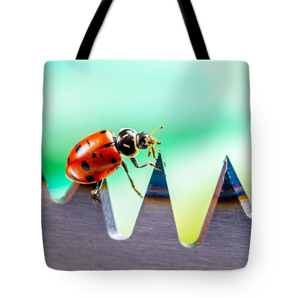 Sea Of Pain Tote Bag by TC Morgan