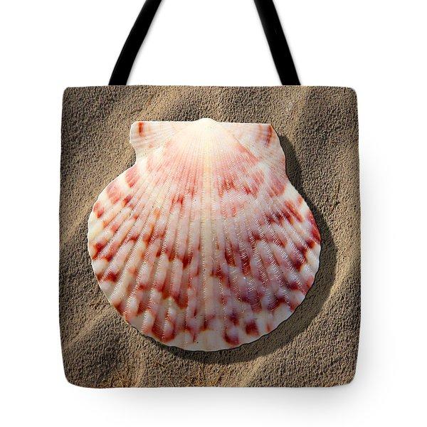 Sea Shell Tote Bag by Mike McGlothlen