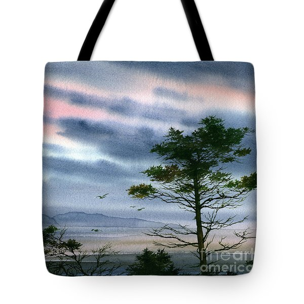 Seacoast Winter Sunset Tote Bag by James Williamson