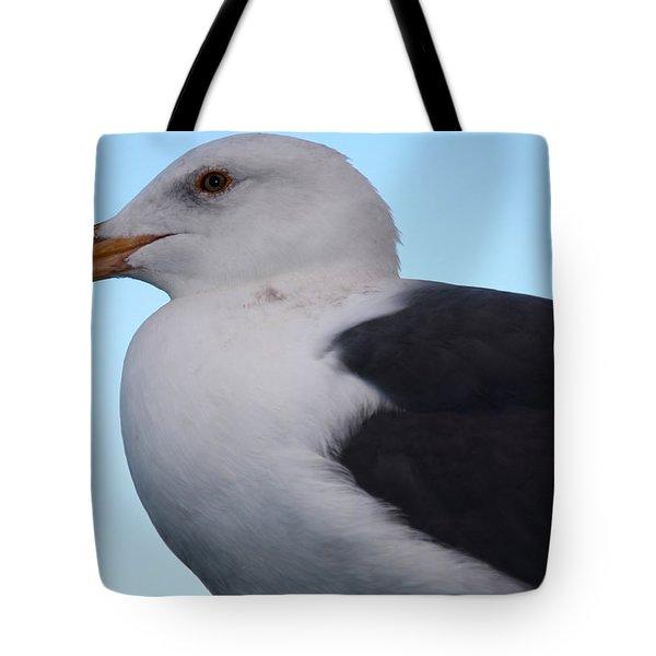 Seagull Tote Bag by Aidan Moran