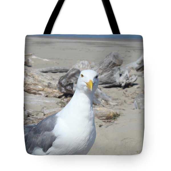 Seagull Bird art prints Coastal Beach Driftwood Tote Bag by Baslee Troutman