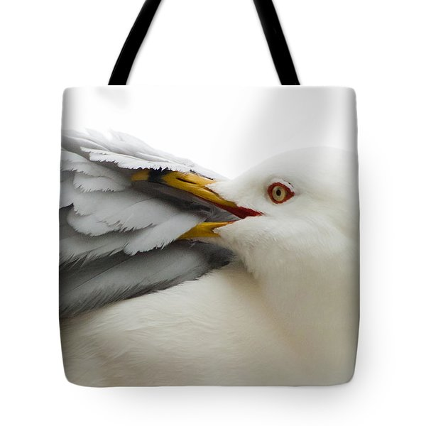 Seagull Pruning His Feathers Tote Bag by Keith Allen
