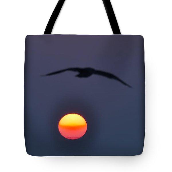 Seagull Sun Tote Bag by Bill Cannon