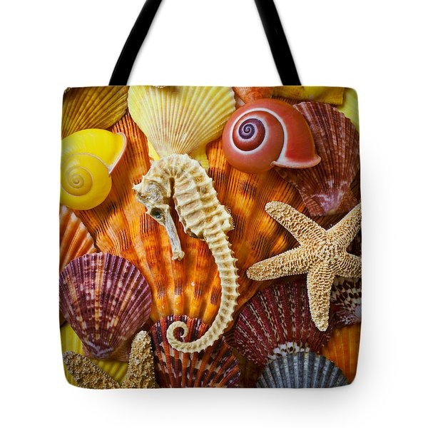 Seahorse And Assorted Sea Shells Tote Bag by Garry Gay