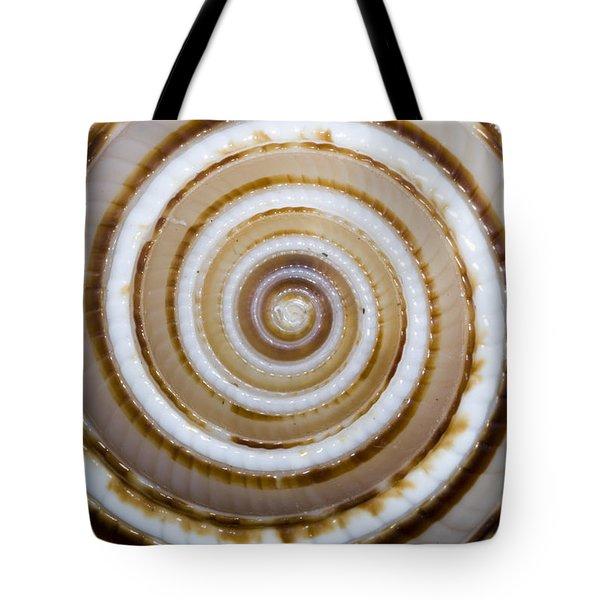 Seashell Spirals Tote Bag by Bill Brennan - Printscapes