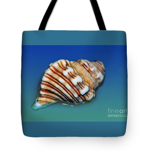Seashell Wall Art 1 Tote Bag by Kaye Menner