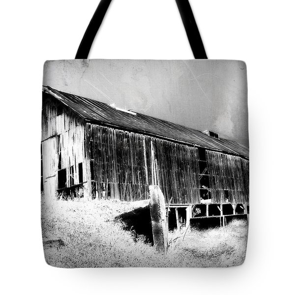 Seen Better Days Tote Bag by Julie Hamilton
