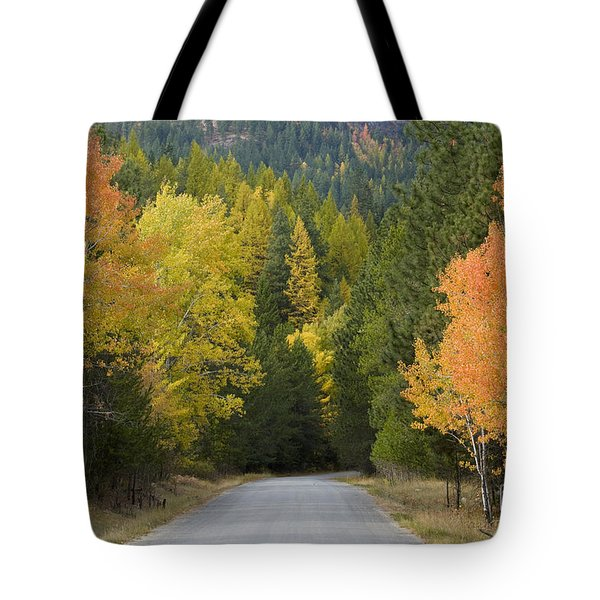 Selkirk Color Tote Bag by Idaho Scenic Images Linda Lantzy