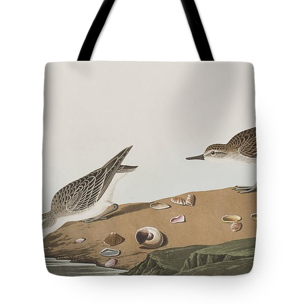 Semipalmated Sandpiper Tote Bag by John James Audubon