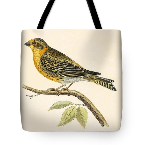 Serin Finch Tote Bag by English School