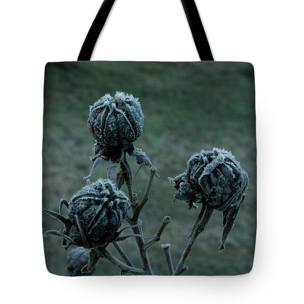 Shadowy Frozen Pods from the Darkside Tote Bag by Douglas Barnett