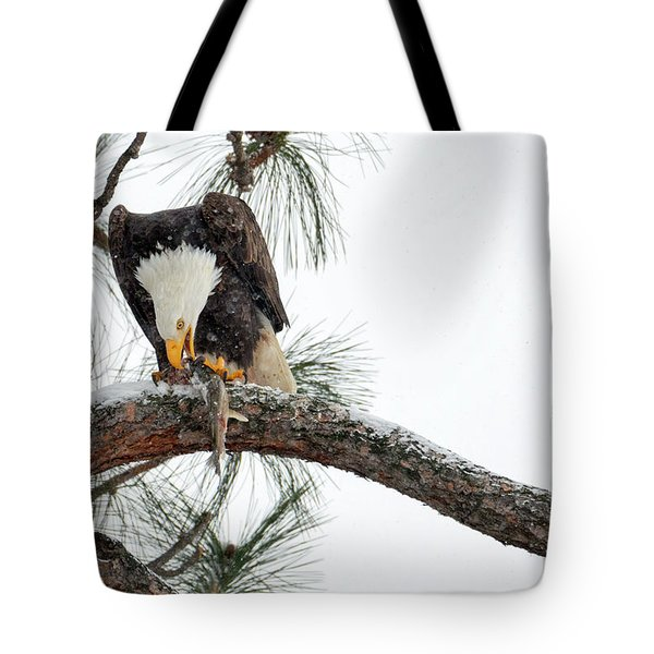 Share The Wealth Tote Bag by Mike Dawson