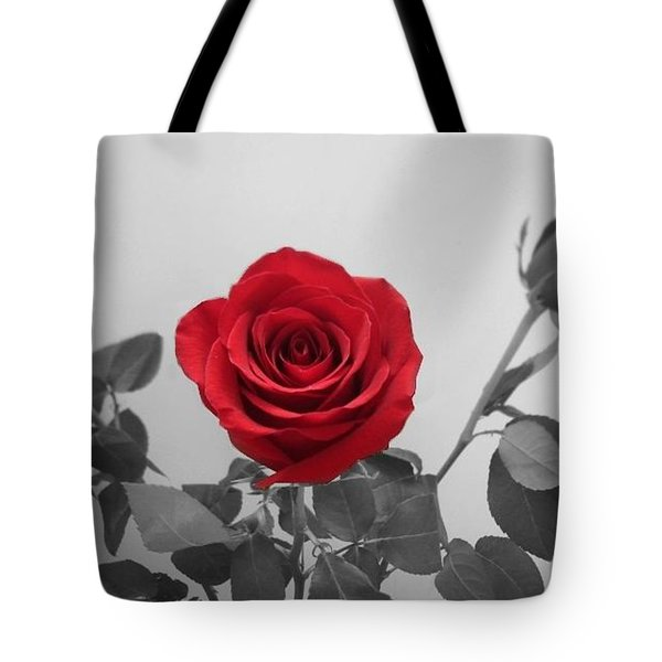 Shining Red Rose Tote Bag by Georgeta  Blanaru