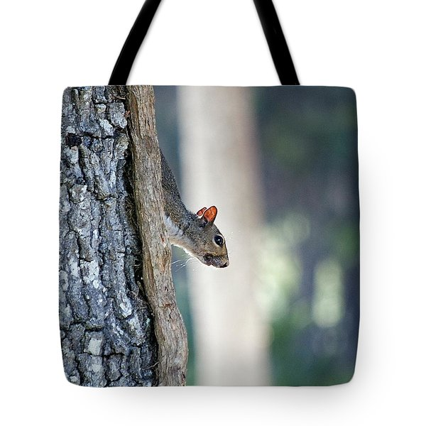 Shy Squirrel Tote Bag by Kenneth Albin