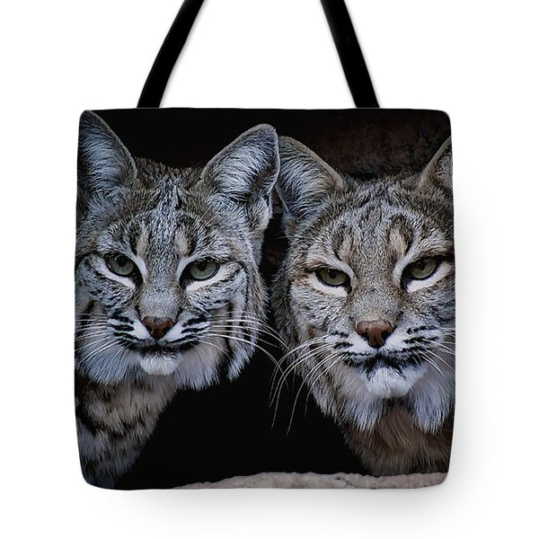 Side By Side Tote Bag by Elaine Malott