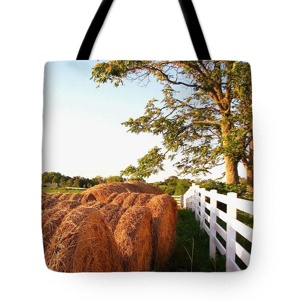 Side-by-side Tote Bag by Todd A Blanchard