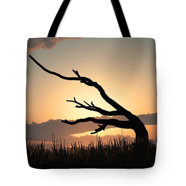 Silhouette Tote Bag by Bob Orsillo
