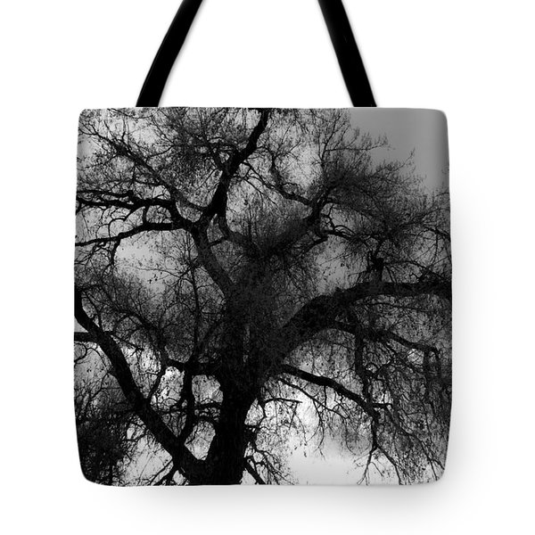 Silhouette Tote Bag by James BO  Insogna