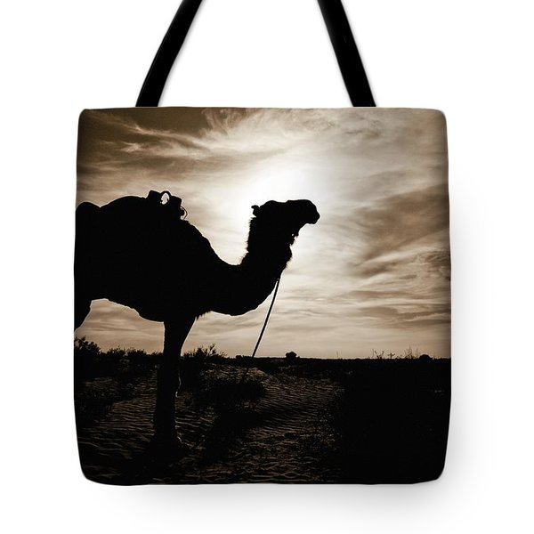 Silhouetted Camel, Sahara Desert, Douz Tote Bag by David DuChemin