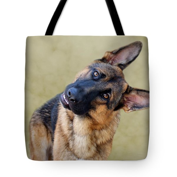 Silly Boy Tote Bag by Sandy Keeton