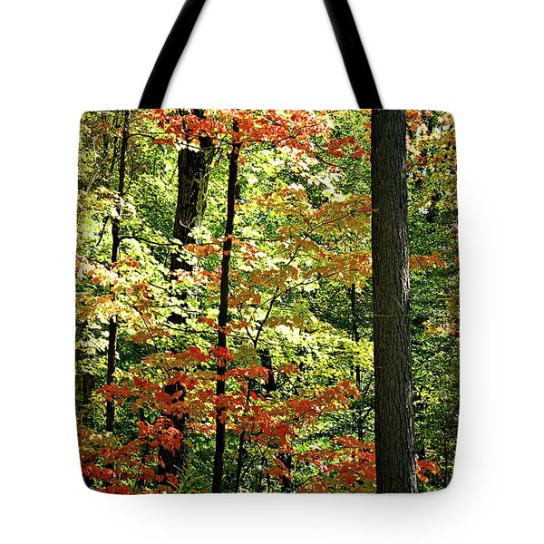 Simply Autumn Tote Bag by Joan  Minchak