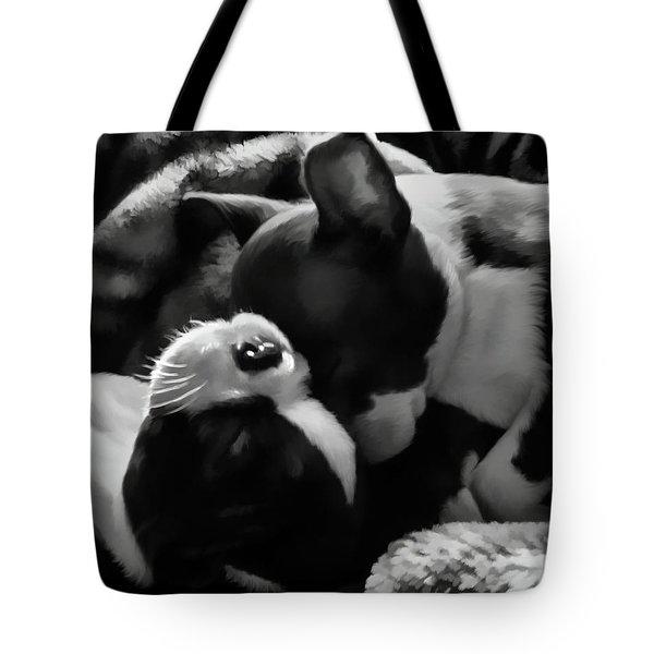 Sleeping Beauties - Boston Terriers Tote Bag by Jordan Blackstone