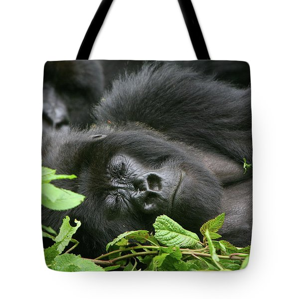 Sleeping Giant Tote Bag by Bruce J Robinson