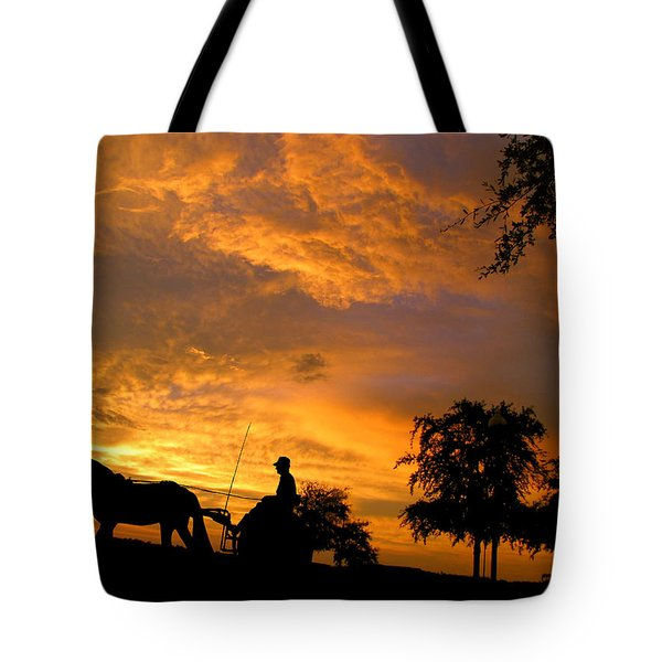 Slow Ride Tote Bag by Adele Moscaritolo