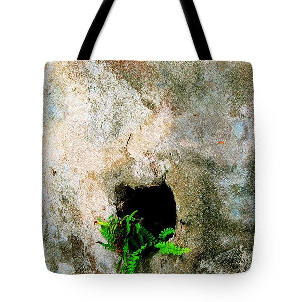 Small Ferns Tote Bag by Perry Webster