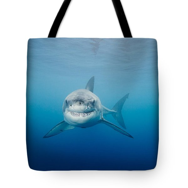 Smiling Great White Shark Tote Bag by Dave Fleetham - Printscapes