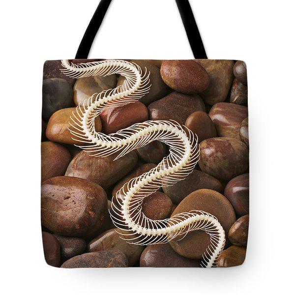 Snake skeleton  Tote Bag by Garry Gay