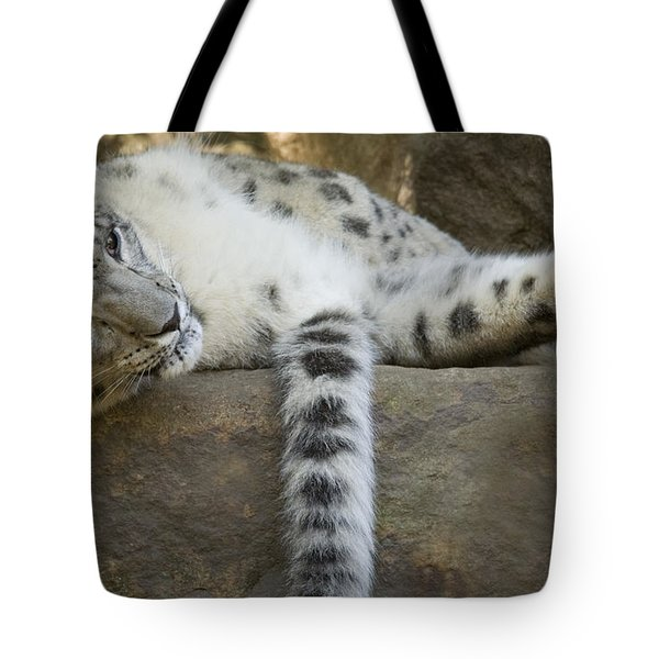 Snow Leopard Nap Tote Bag by Mike  Dawson