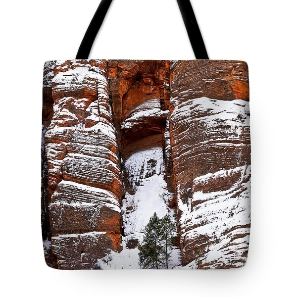 Snow Stripes Tote Bag by Christopher Holmes