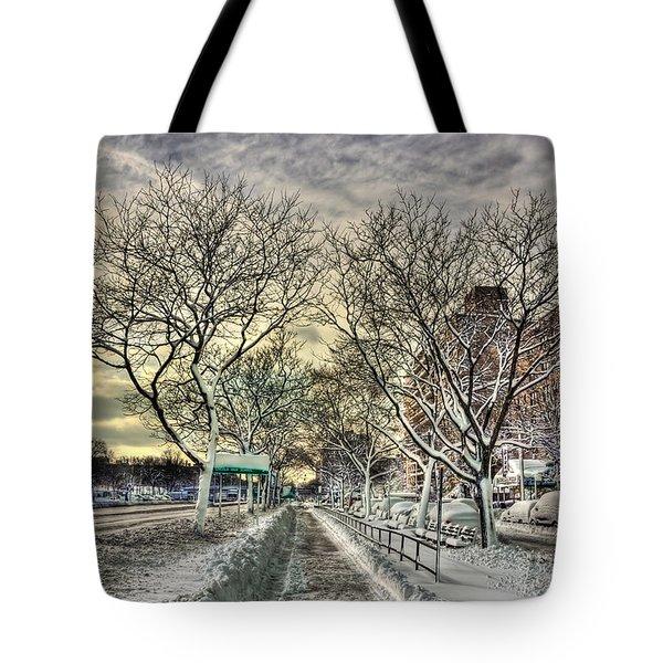 Snowbound Tote Bag by Evelina Kremsdorf
