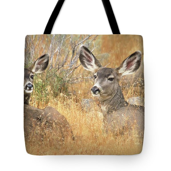 So Much For Your Secret Place... Tote Bag by Donna Kennedy