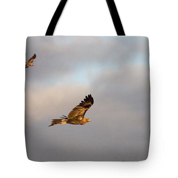 Soaring Pair Tote Bag by Mike  Dawson