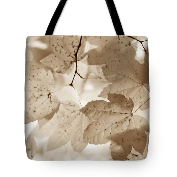 Softness Of Brown Maple Leaves Tote Bag by Jennie Marie Schell