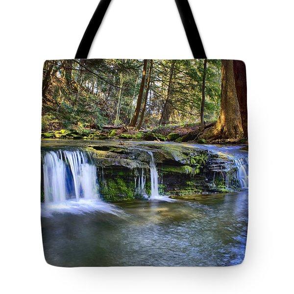 Solitude Tote Bag by Skip Tribby