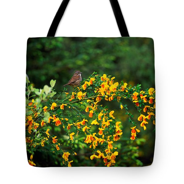 Song Sparrow Bird On Blooming Scotch Tote Bag by Panoramic Images