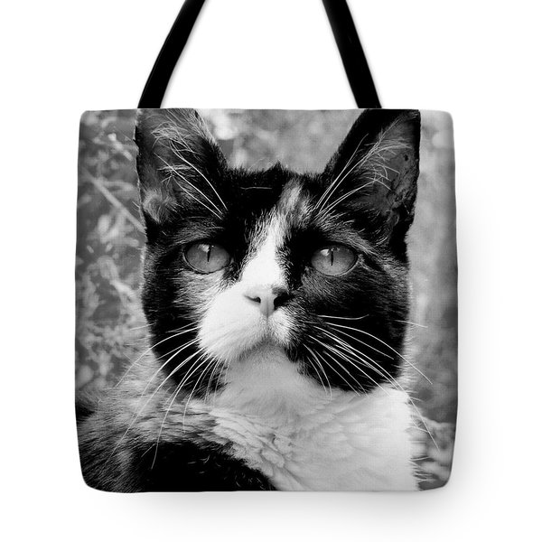 Souls Great And Small Tote Bag by Rory Sagner