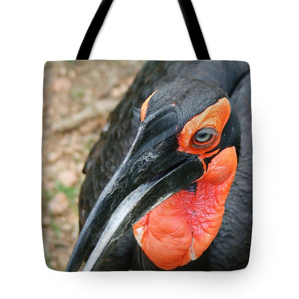 Southern Ground Hornbill Tote Bag by Ernie Echols